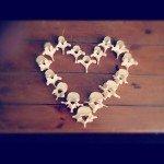 Vertebrae heart